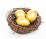 Golden eggs in nest Royalty Free Stock Photo