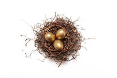 Golden eggs in nest Royalty Free Stock Image