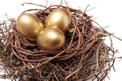 Golden eggs in nest. Three golden eggs in the nest isolated on white background royalty free stock photos