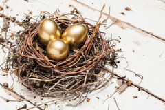 Golden eggs in nest Stock Photography