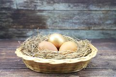 Golden egg in the basket stock photos