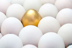 Golden eggs among the white eggs Stock Photos