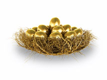Golden Eggs. Worthy Investment for the future Stock Images