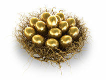 Golden Eggs. Worthy Investment for the future Stock Photos