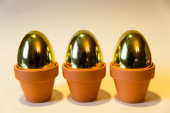 Golden eggs with a yellow background Stock Images
