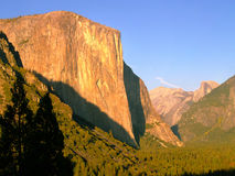 Golden El Capitan Stock Image