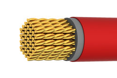 Golden Electrical Shiny Cable Stock Image
