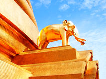 A golden elephant replica. A golden elephant statue represents the country around Thailand standing at a corner of Phra Maha Chedi in Wat Bovornnives , Bangkok Stock Images