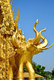 Golden elephants on a temple wall of Thailand stock photography
