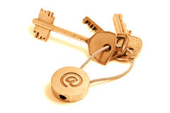 Golden email keys royalty free stock photo