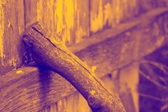 Golden enhanced wooded stick against fence. Golden stick against Stock Photography