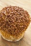 Golden Enoki mushrooms Royalty Free Stock Images