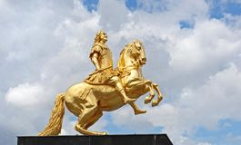 Golden Equestrian Stock Photos