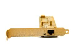 Golden ethernet card Royalty Free Stock Image