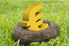 Golden Euro symbol in nest Royalty Free Stock Image
