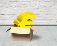 Golden Euro symbol in opened cardboard box Stock Images