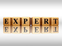 Golden expert with reflection Stock Image