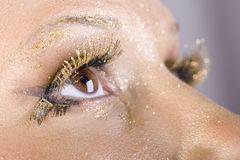 Golden Eye Royalty Free Stock Photo