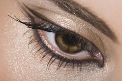 Golden Eye. Close-up of woman hazel eye Stock Photos