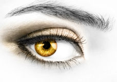 Golden eye. B&W photo of a right woman's eye with colored golden eyeball Stock Photos