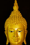 The Golden face of Buddha. Stock Photos