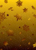 Golden fall Royalty Free Stock Photo