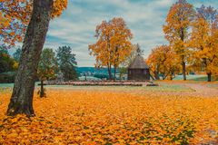 Free Golden Fall Or Autumn Trees In Park Stock Photography - 160694172
