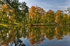 Golden Fall in the park Royalty Free Stock Images