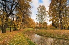 Golden fall Stock Image