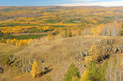 Golden fall in Ural mountain range Royalty Free Stock Photography