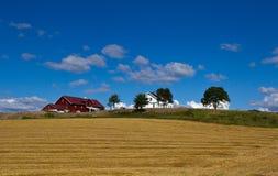 Golden farmland Stock Photo