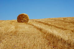 Golden field. With straw stems and straw bale royalty free stock photo