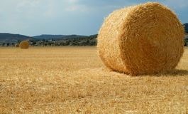 Golden field with straw bales. Catalonia. Golden field with straw bales after harvest in a sunnny day in Catalonia royalty free stock photo