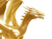 Golden fire dragon. Isolated on white background Stock Photos