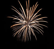 Golden firework Royalty Free Stock Images