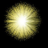 Golden Firework Blossom. A single firework bursts in a golden blossom against the night sky Stock Photography