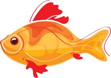 Golden fish Royalty Free Stock Image