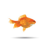 Golden fish abstract isolated Stock Photography