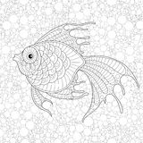 Golden fish. Adult antistress coloring page Stock Image