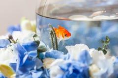 Golden fish decoration. Flower arrangement Stock Photos