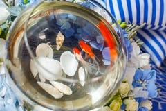Golden fish decoration. Flower arrangement Royalty Free Stock Photo