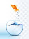 Golden Fish Jumping Out Bowl Poster. Golden fish jumping high out the round fishbowl with clear water light checkered background poster vector illustration Stock Photography