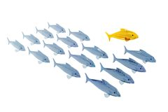 Jump out. Golden fish jumping out of normal fish rank, clipping path Stock Photo