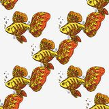 Golden fish. Seamless background pattern. Hand drawn  stock illustration Stock Photo