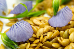 Golden flax seeds with blue flower petals. Closeup Royalty Free Stock Photos