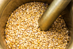 Golden flax seeds inside bronze mortar Stock Photos