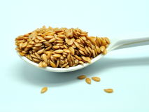 Golden flaxseed Stock Photography