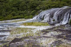 Golden fleece terrace on Geothermal park. Golden fleece terrace on Thermal park Orakei Korako Royalty Free Stock Photos