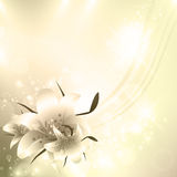 Golden Floral holiday background Royalty Free Stock Image