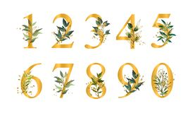 Golden floral numbers with green leaves and gold splatters isolated stock illustration